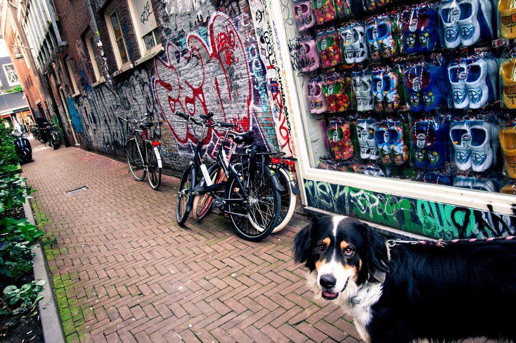 amszterdam_k (21 of 26)