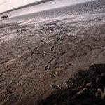 iszapsta wadlopen butjadingen nordsee northsea sea germany vanlife photography travelblog